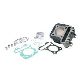 Cilinderkit Polini Gietijzer Sport 79cc 49mm voor Piaggio 50 4T 2V